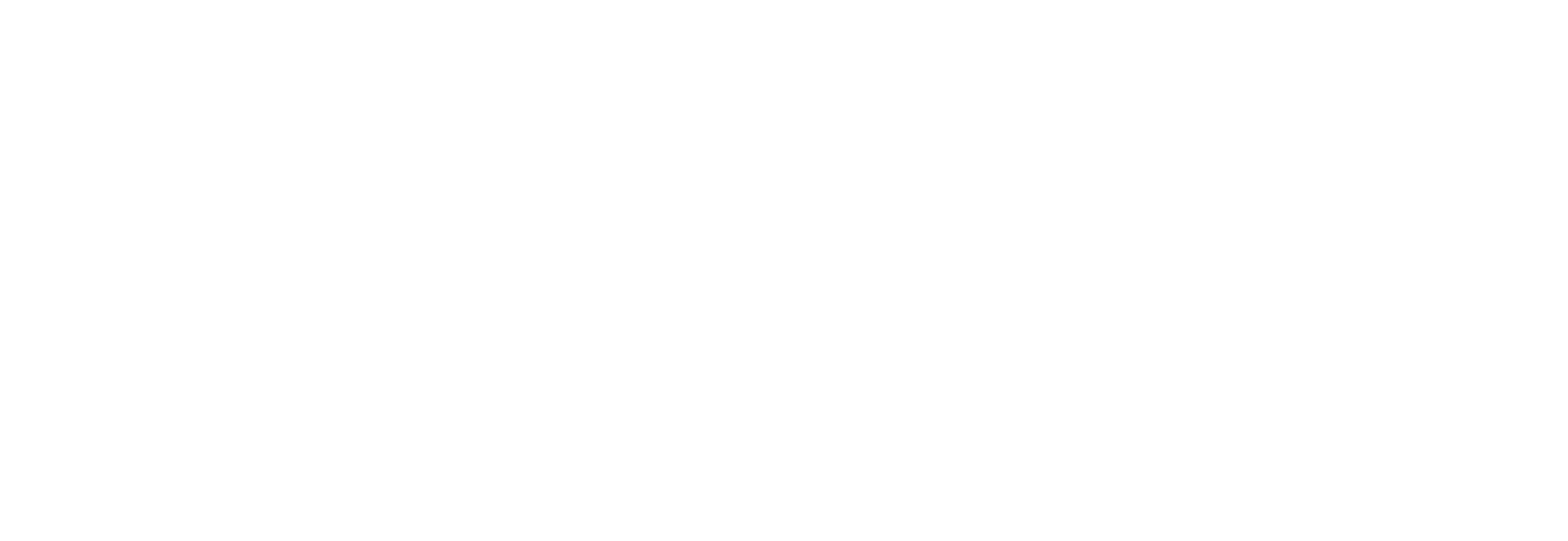 Phoenix Move Out House Cleaning Pros white logo